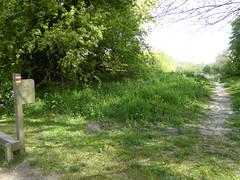 Gravelines rando autour du Parc   (4)