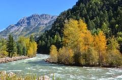 Animas River, Colorado