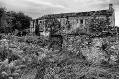Série maisons abandonnées - Photo of La Vergne