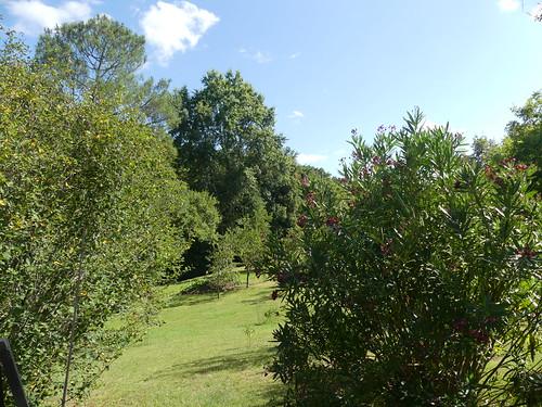Jardin landais