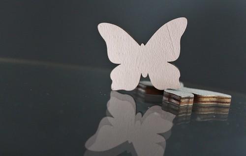 ~papillon~