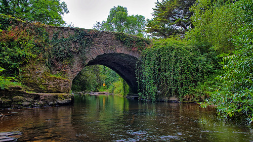 The bridge over the Clare River, Clare Glens, Co. Tipperary