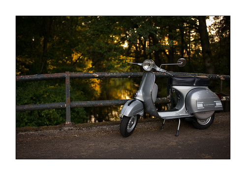 in the evening light [Vespa Rally 200]