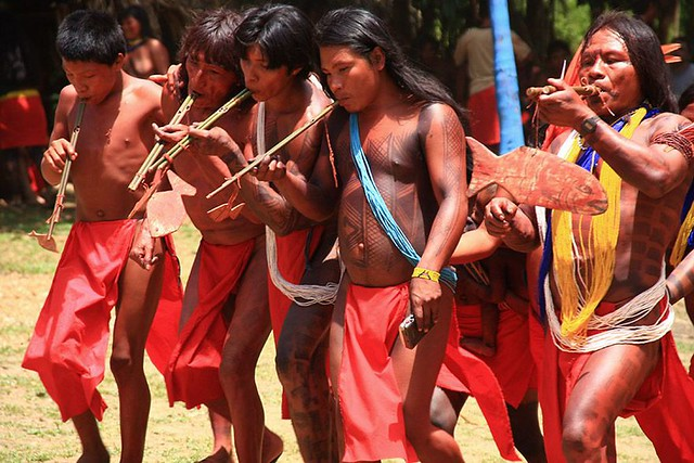Terra Indígena Waiãpi (TIW), no Oeste do Amapá, é reconhecida oficialmente desde a década de 1990 - Créditos: Divulgação Portal IPHAN