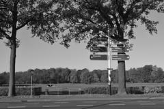 Stationsweg en borden in Ommen (135FJAKA_2348)