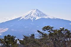 Snowy Mt. Fuji