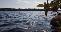 Governor Lake, Nova Scotia