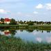 2003.07.23. Kórógy-tó - Fotók:PURGEL ZOLTÁN©