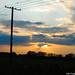 2003.08.01. Naplemente előtt a Holt-Tiszán - Fotók:PURGEL ZOLTÁN©