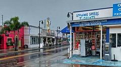 Tarpon Springs FL (7)