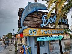Tarpon Springs FL (9)