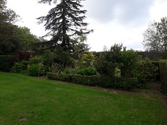 20190503_103248 - Photo of Englesqueville-en-Auge