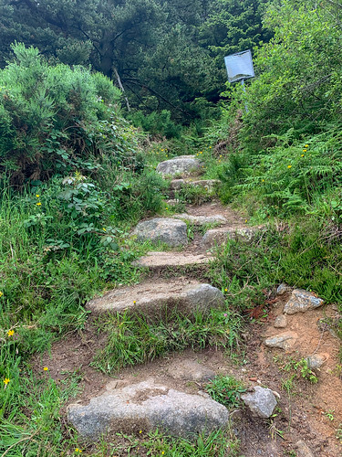 Wicklow Way 2019-22
