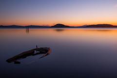 Image by Massimo_Discepoli (massimodiscepoli) and image name Sinking photo