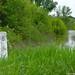 2005.05.05. Tisza áradás - Fotók:PURGEL ZOLTÁN©