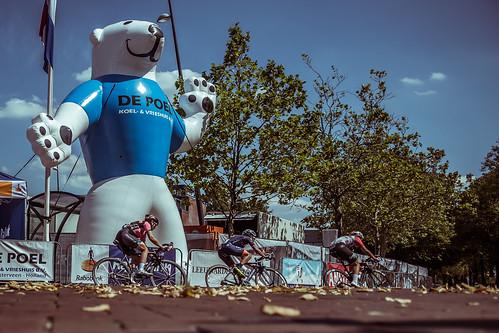 Break away passes polar bear