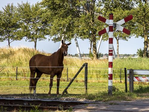 SHM Spoorwegovergang Broerdijk 7 juli 2018