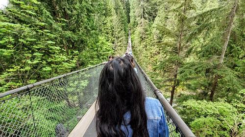 Capilano Suspension Bridge in Vancouver, BC