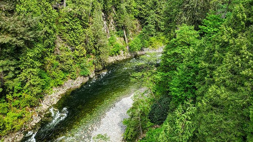 View from the Capilano Suspension Bridge in Vancouver, BC