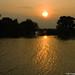 2006.04.29. Tisza áradás - Fotók:PURGEL ZOLTÁN©