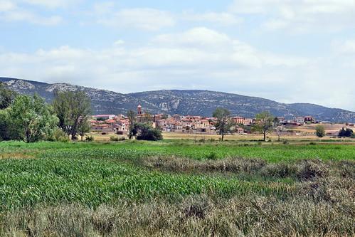 Vista desde los Aguanares (Gallocanta)
