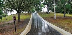 Safety Harbor Site- Phillipe Park- Safety Harbor FL  (3)