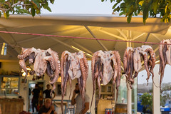 Freshly caught octopuses hanging on rope in front of a restaurant on the island of Paros, Greece