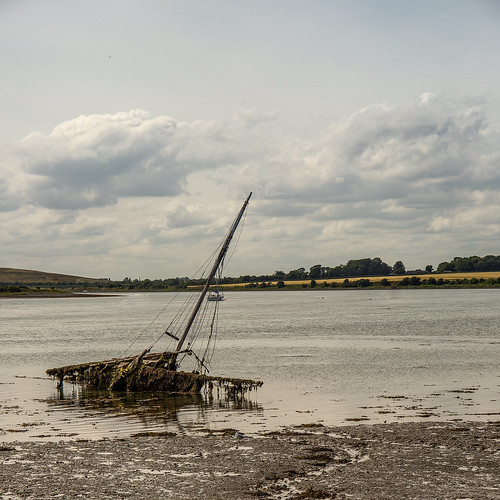 at rest on Rogerstown estuary