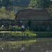 2006.09.24. Tereprendezés és faültetés a Kurca-parti sétányon - Fotók:PURGEL ZOLTÁN©