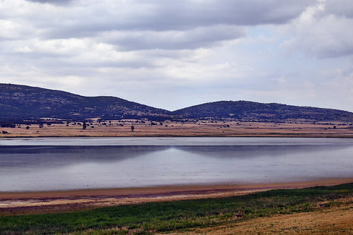 Laguna (Gallocanta)