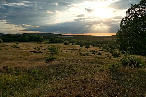 Naturschutzgebiet großer Weideteich bei Plauen
