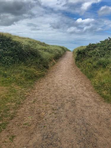Sandy Path (199/365)