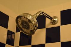 Showerhead in Bathroom - Room 510, Hotel Triton, San Francisco