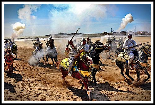 Gunpowder and Horses