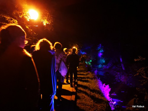 Midnight Faeries at Glencar