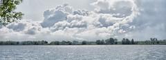 Riverbank - Nieuwe Merwede, Dordrecht