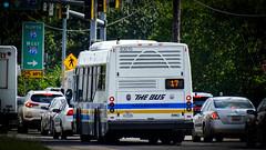 Prince George's County THE BUS 2019 El Dorado National Axess BRT #63015