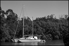 Yacht on Cabbage Tree Creek Sandgate-1=