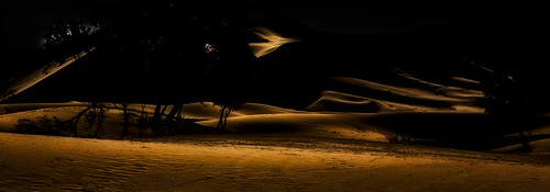 the magic of the desert