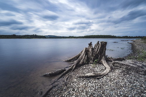 Poulaphouca Reservoir, Ireland