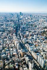 Roppongi Hills Mori Tower: Tokyo City View, Shibuya Route