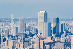 Roppongi Hills Mori Tower: Skydeck, Ikebukuro