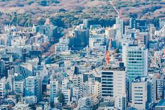 Roppongi Hills Mori Tower: Skydeck, Harajuku