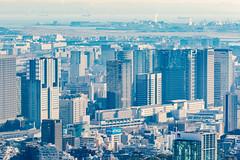 Roppongi Hills Mori Tower: Skydeck, Shinagawa