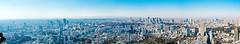 Roppongi Hills Mori Tower: Skydeck