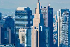 Roppongi Hills Mori Tower: Skydeck, Shinjuku