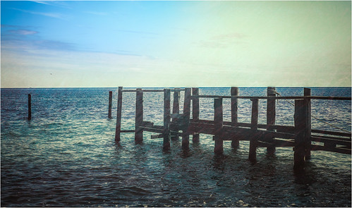 Vitt's sea view