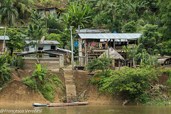 Village along Rio Chuqunaue - Darien - Panama CD5A1079