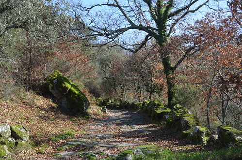 Walking along an old medieval road