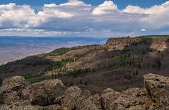 Flowing Park Trail (8-4-19)